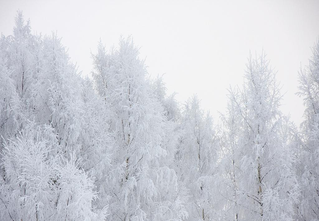 Consejos fotografiar en frio extremo