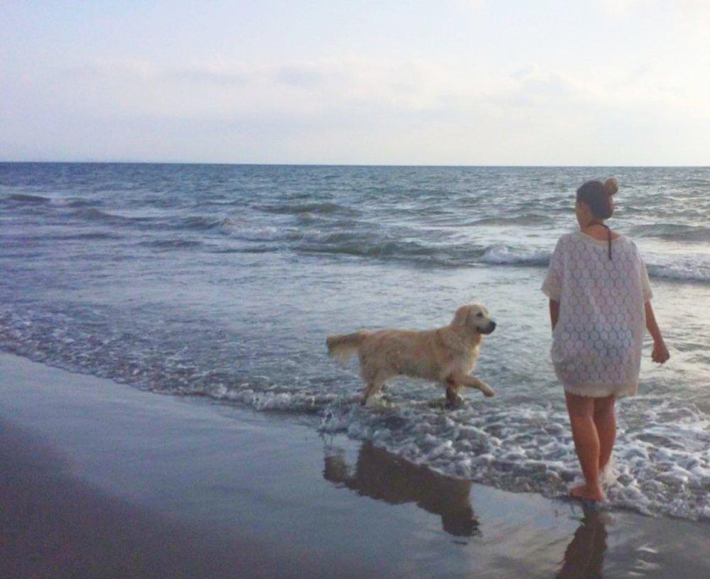 Madrugada de playa para Zeus